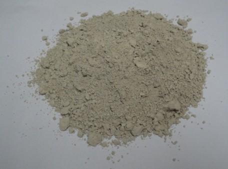 硅藻土催化剂