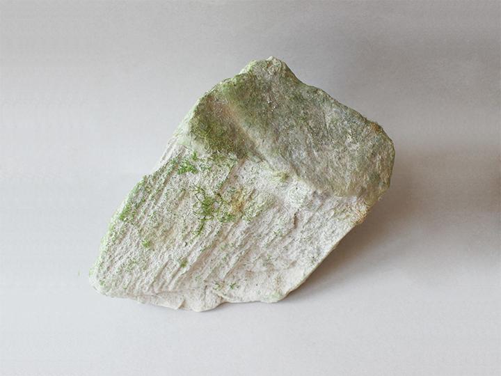 硅藻土原矿